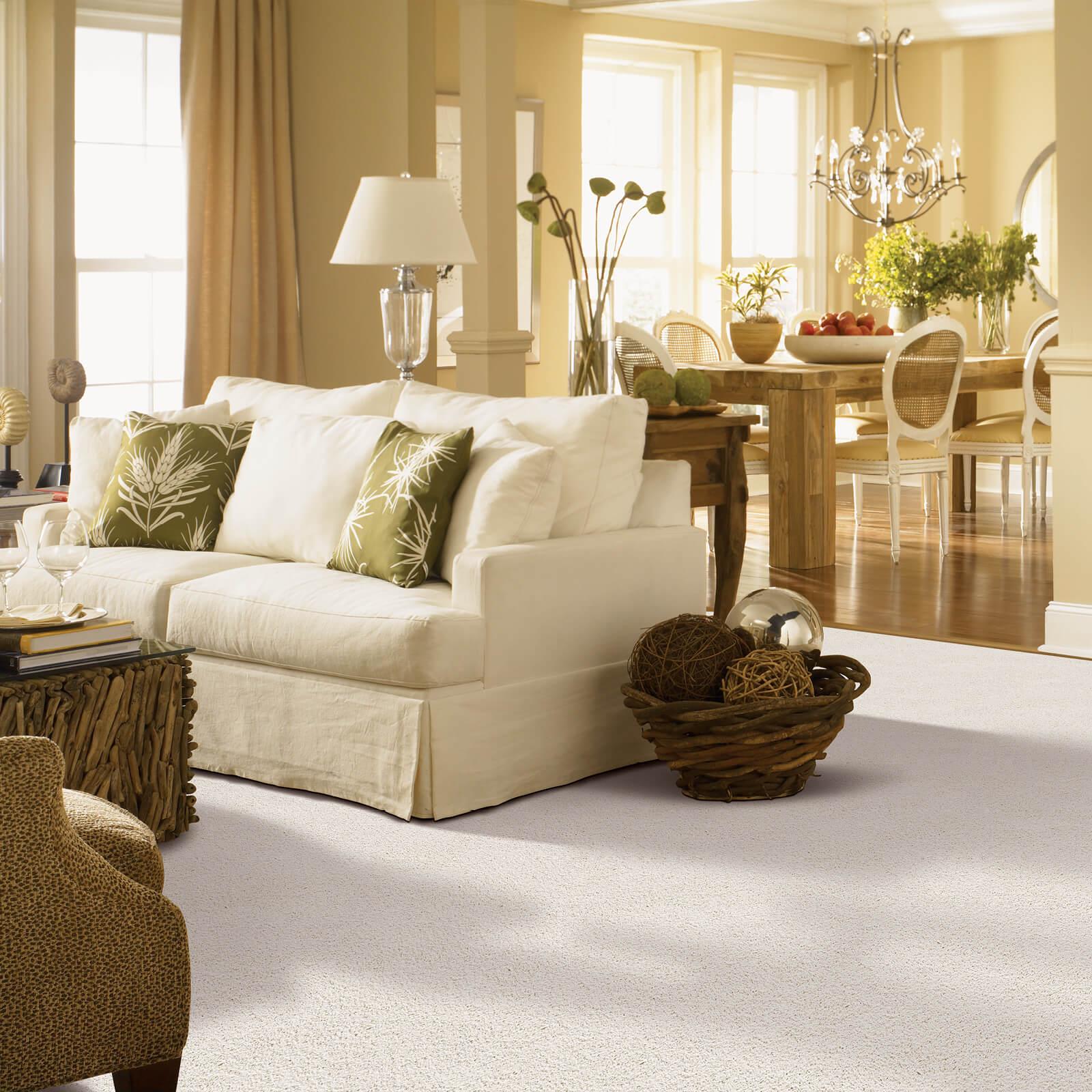 Gentle Approach of carpet | Great Floors