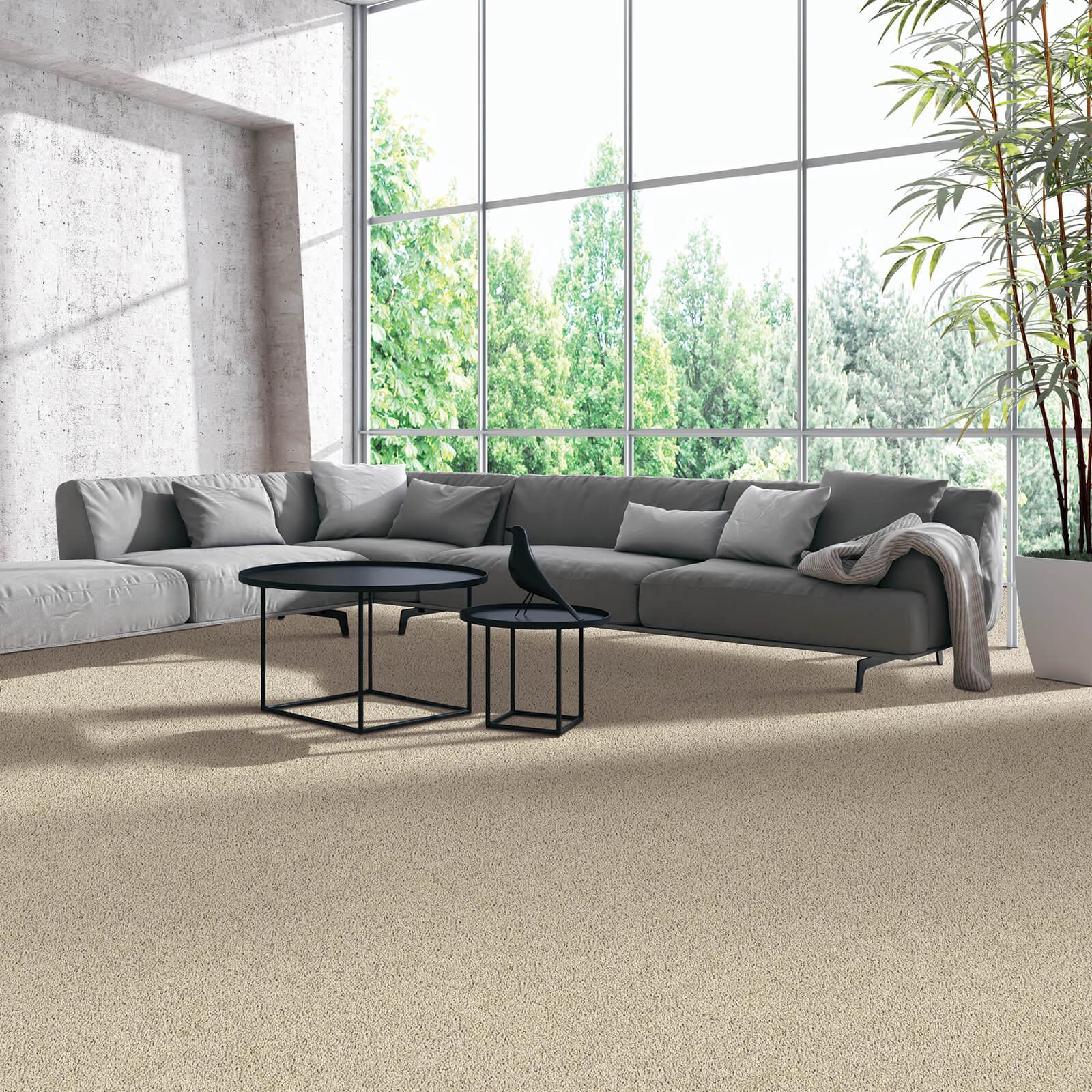 Modern living room | Great Floors