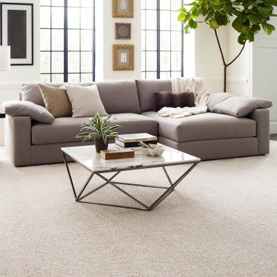 Carpet Flooring | Great Floors