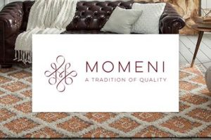 Momeni | Great Floors