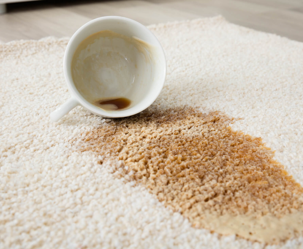 How to Remove Common Carpet Stains   Great Floors